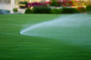 sprinkler spraying a lawn